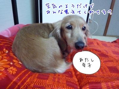 幸子P1330964