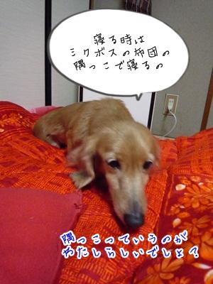 幸子P1330971