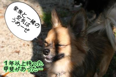 こそきちIMG_2010