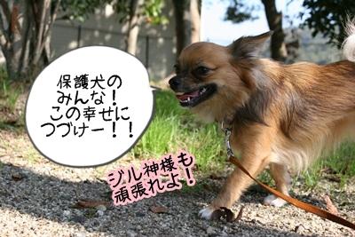 こそきちIMG_2072