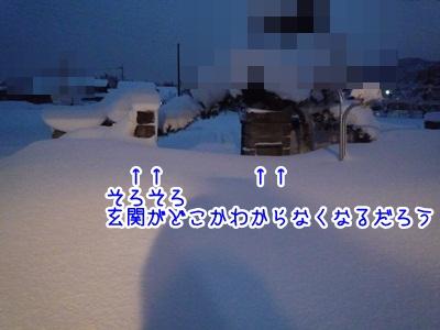 寒波P1340305