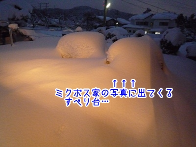 寒波P1340304