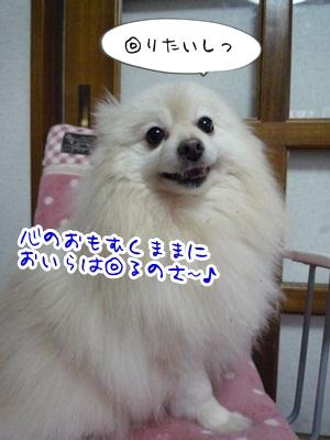 はるP1340685