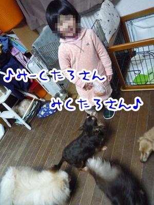 みく太郎P1340976