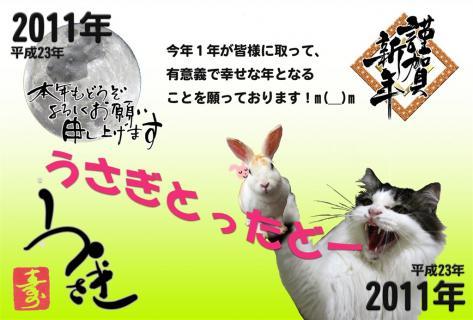 20110102-01.jpg
