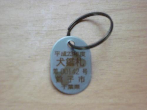 P1060327_convert_20110611151521.jpg