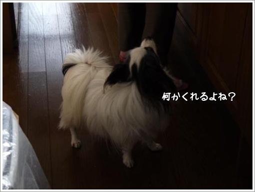 010_convert_20130218093235.jpg