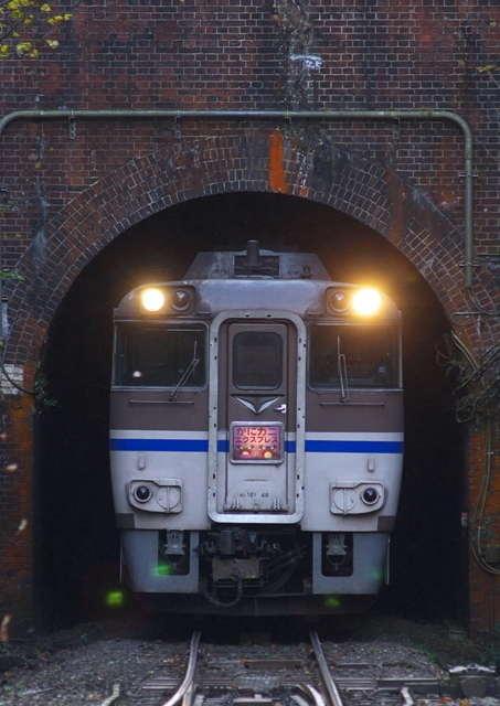 101128-JR-W-DC181-kanikani-igumi-4.jpg