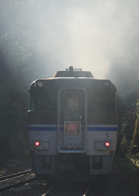 101219-JR-W-DC181-kanikani-igumi-b-1.jpg