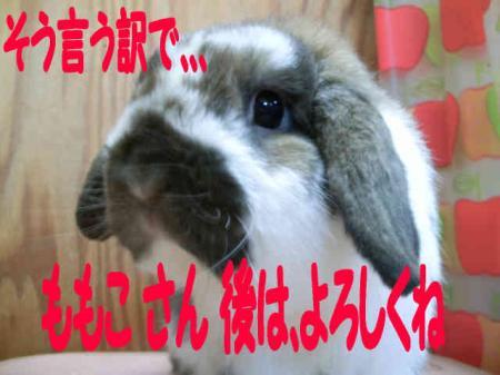 小五郎 7