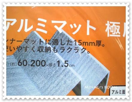 20110708 (7)のコピー