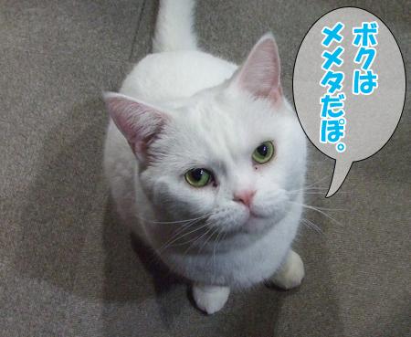100101_お正月姫2