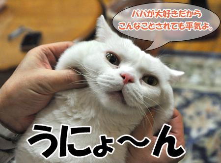 100101_お正月姫3