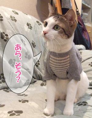 100111_リン洋服2