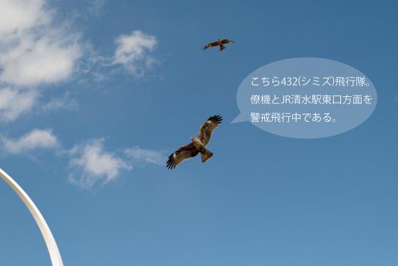 _SDI5867-Edit.jpg