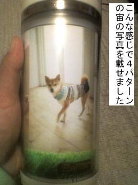 koromogae3.jpg