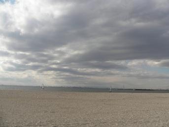 20110107-5.jpg