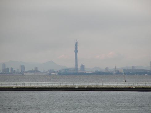 20110107-6.jpg