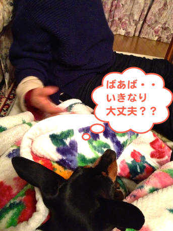 20120220-3.png