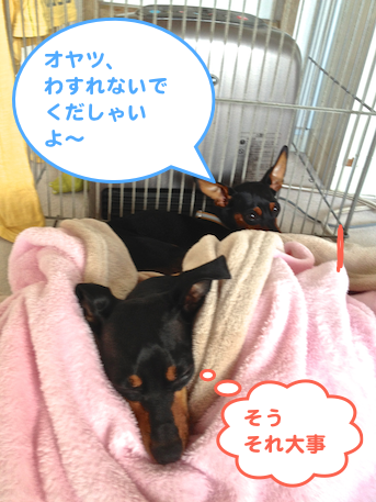 20130110-5.png