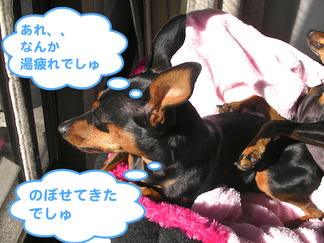 20130111-4.png
