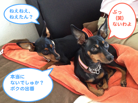 20130116-6.png