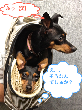 20130116-8.png
