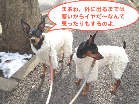 20130118-1.png