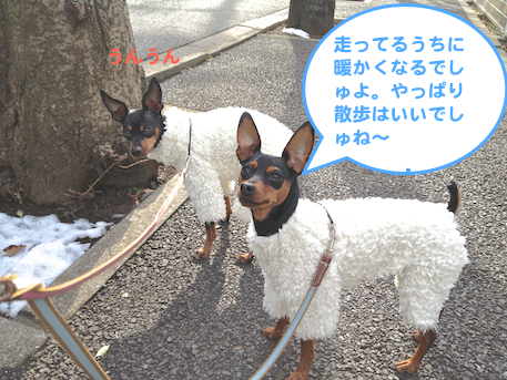 20130118-2.png
