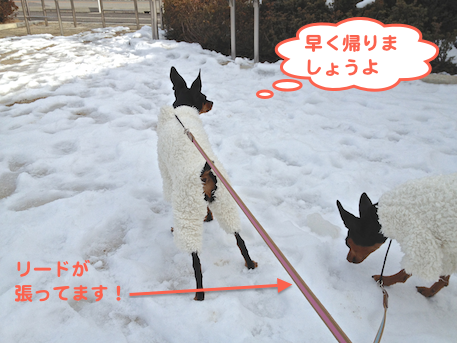 20130118-3.png