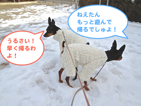 20130118-4.png