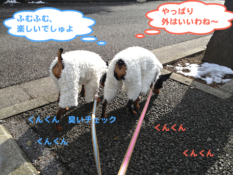 20130118.png