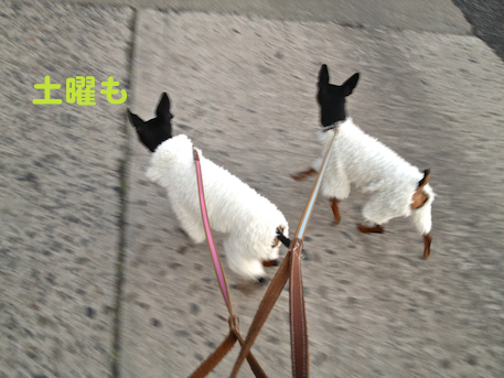 20130122-2.png