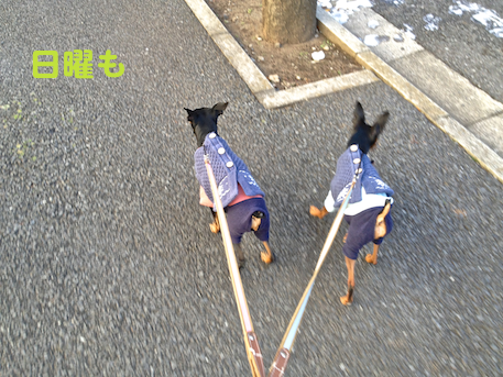 20130122-3.png