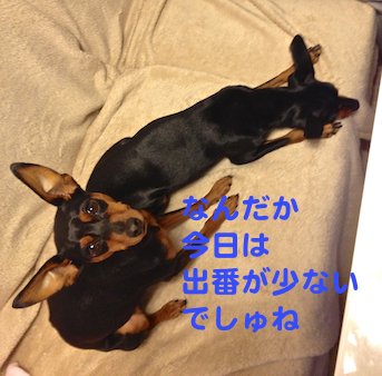 20130124-4.png