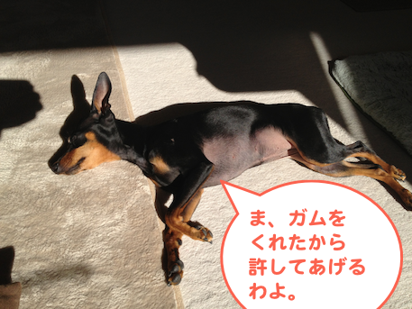 20130129-2.png