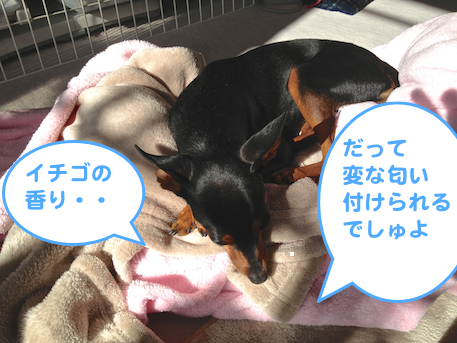 20130129-4.png