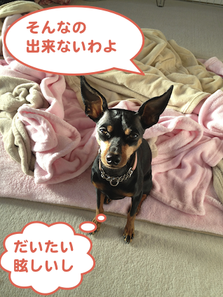 20130131-4.png