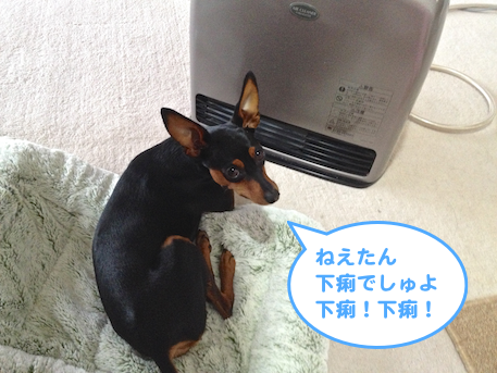 20130204-5.png