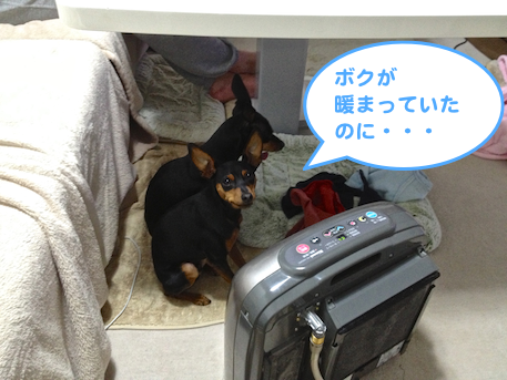 20130207-2.png