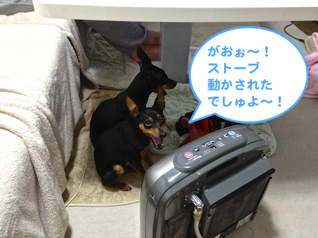 20130207-3.png