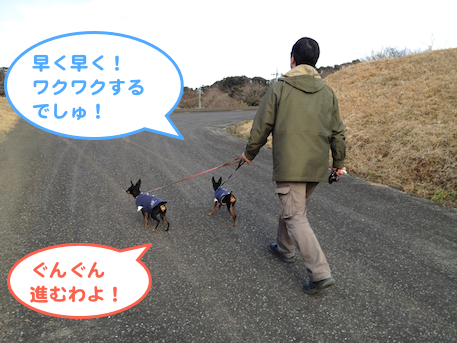 20130209-2.png