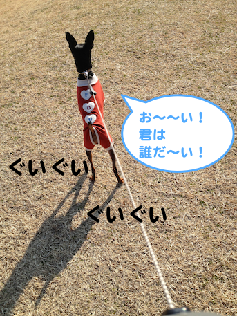 20130214-11.png