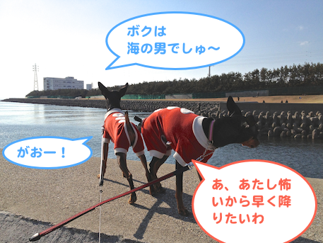 20130214-9.png