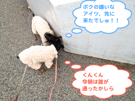 20130218-5.png