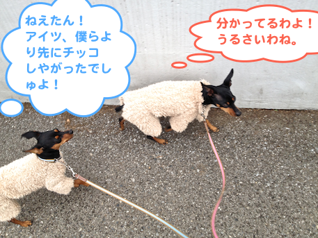 20130218-6.png