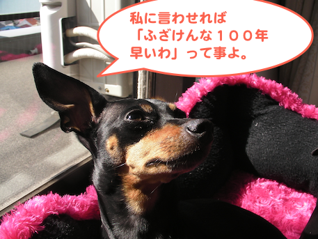 20130222-6.png