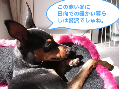 20130222.png