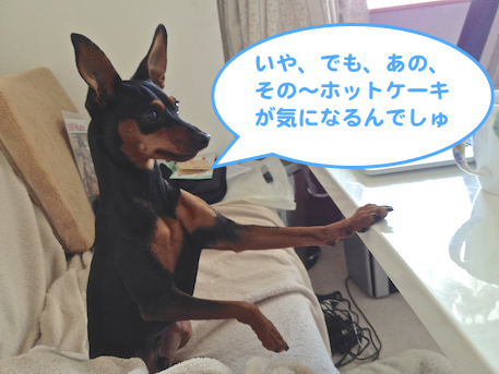 20130225-3.png