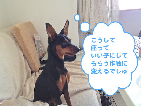 20130225-4.png